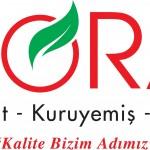 ayd logo_00014