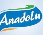 ayd logo_00037