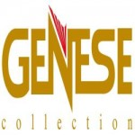Gns_logo