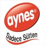 aynes logo 1
