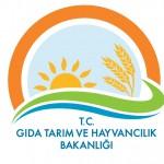 GTHB Yeni Logo (1)
