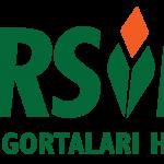 logo_havuz_big